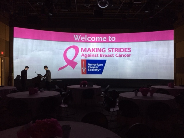 3rd Quarter 2017 Making Strides Against Breast Cancer August 23